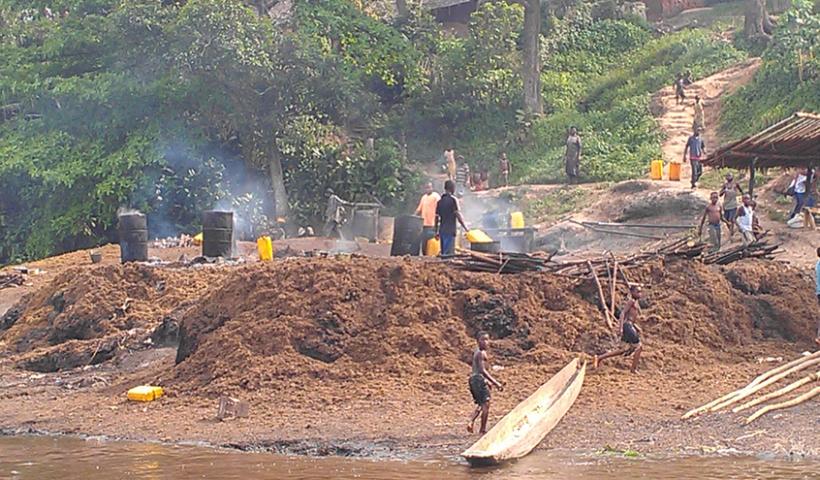Plantación tradicional de aceite de palma en Yalifombo (RDC). Foto: Farmlandgrab.org.